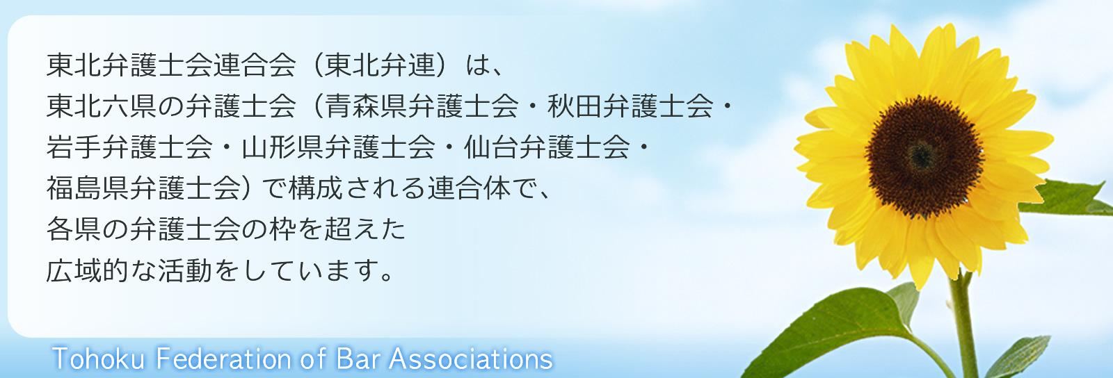 東北弁護士会連合会は、東北六県の弁護士会(青森県弁護士会・秋田弁護士会・岩手弁護士会・山形県弁護士会・仙台弁護士会・福島県弁護士会)で構成される連合体で、各県の弁護士会の枠を超えた広域的な活動をしています。